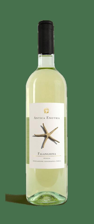 Falanghina vino bianco biologico antica enotria