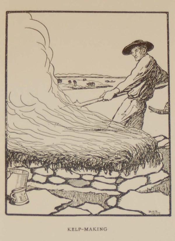 Jack B Yeats Print for sale Kelp Maker, a Jack B Yeats print from 1911