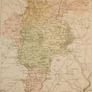 Antique map published in 1883 of County Carlow, Ireland. The map breaks the county down into it's historical baronies including Rathvilly, Carlow, Idrone West, Idrone East, Forth, St Mullins Upper, St Mullins Lower.