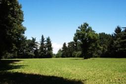 Parco_Antico_Podere_di_Rezzano