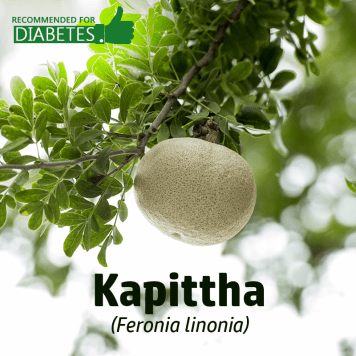 kapitha-feronia-limonia