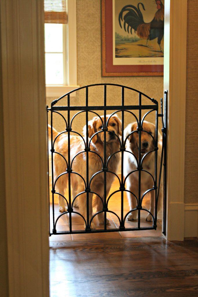 Custom Dog Gate For These Beautiful Goldens Antietam