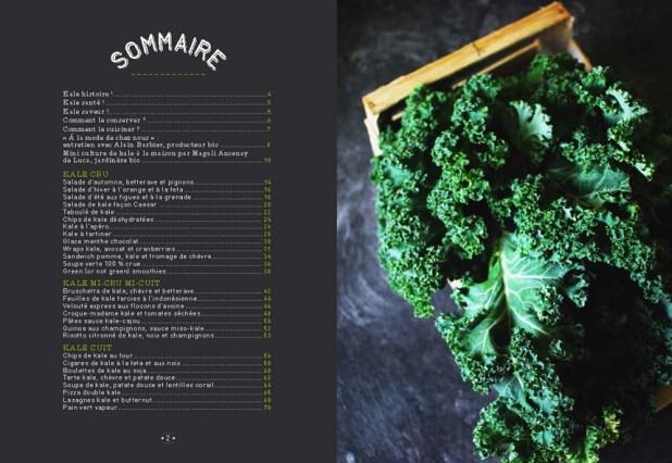 Kale, un super aliment dans votre assiette [livre] | Antigone XXI