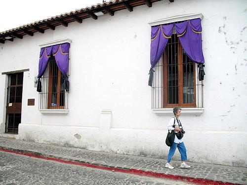 Lent Purple Banners for Windows
