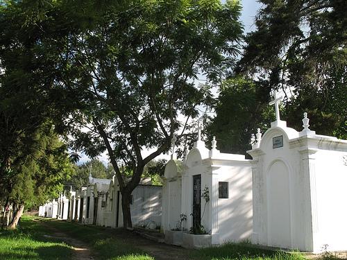 Tree-lined Cemetery pathway in La Antigua Guatemala