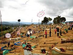 Giant Kites Flying over the Cemetery