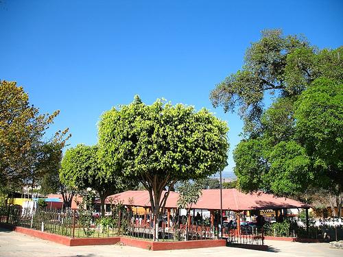 Parque of San Pedro Las Huertas