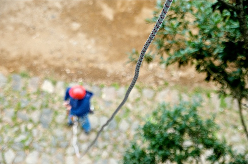 Antigua Canopy Tours: Pick Your Poison