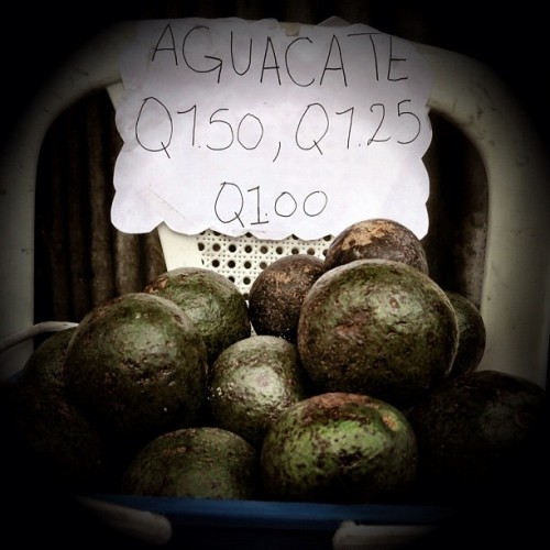 Freshly-picked avocados for sale by Rudy Girón