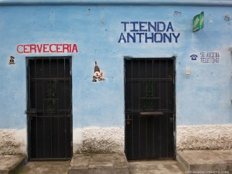Diversify to Survive Approach in Antigua Guatemala by Rudy Giron
