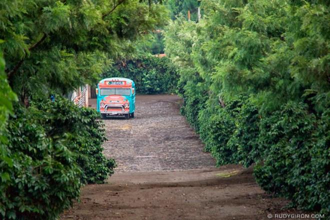 Rudy Giron: Antigua Guatemala &emdash; Vintage Chicken Bus Inside a Coffee Plantation in Antigua Guatemala