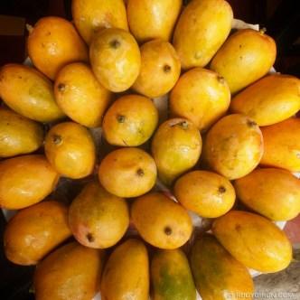 Mango Season in Antigua Guatemala © Rudy Giron