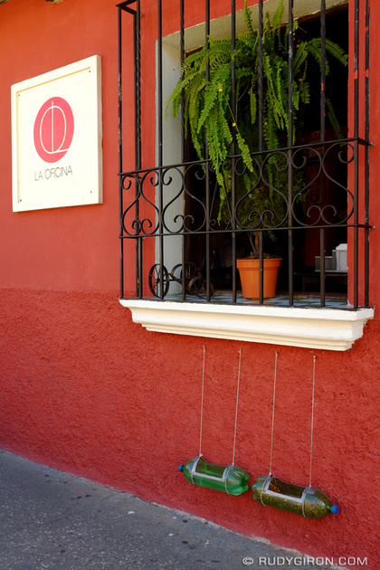 Rudy Giron: Antigua Guatemala &emdash; Feeding the street dogs