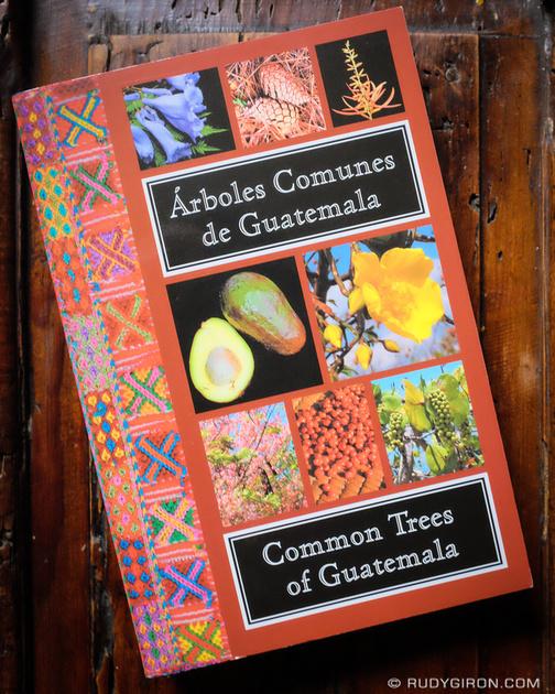 Rudy Giron: Antigua Guatemala &emdash; Common Trees of Guatemala - Cover