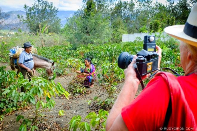 Rudy Giron: Antigua Guatemala &emdash; Maya Portraits — Maya Woman Harvesting Coffee 2