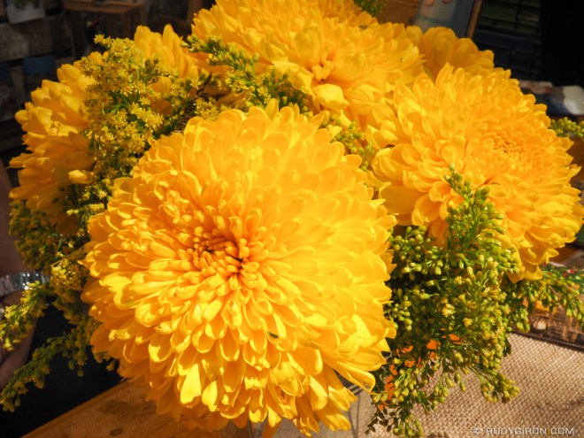 Rudy Giron: Antigua Guatemala &emdash; First Flower Festival of Antigua Guatemala 3