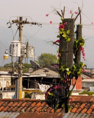 Disguising antennas in Antigua Guatemala