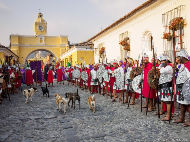 Dogs roaming during a Lenten procession BY RUDY GIRON