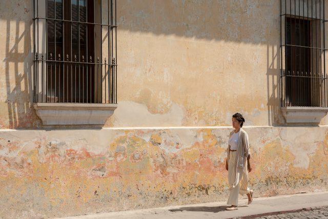 typical-antigua-guatemala-wall-textures-640x427-8130846