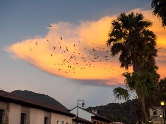 Sunset at Parque de La Unión BY RUDY GIRON