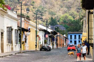 Stray dog crossing a cobblestone street in Colonial Town BY RUDY GIRON