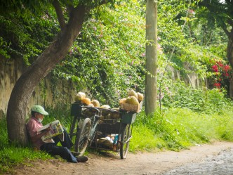 PHOTO STOCK: Sights of Our Times — Coconut Ambulant Vendor