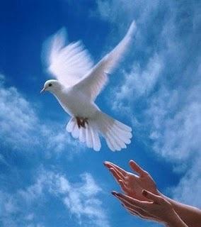 Άνθρωπος - Ειρήνη