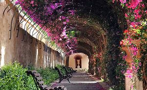 beautiful-streets-trellis-canopies-8__300