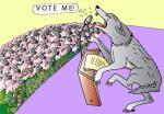 Τι να ψηφίσω…