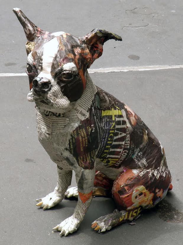 dog_211704g-unnamed_12