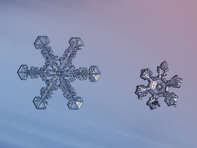 snowflakes12