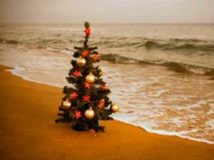 xmas_tree_beach