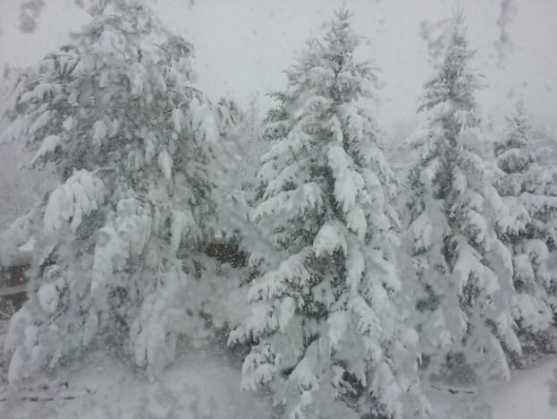 snow-03-23-16