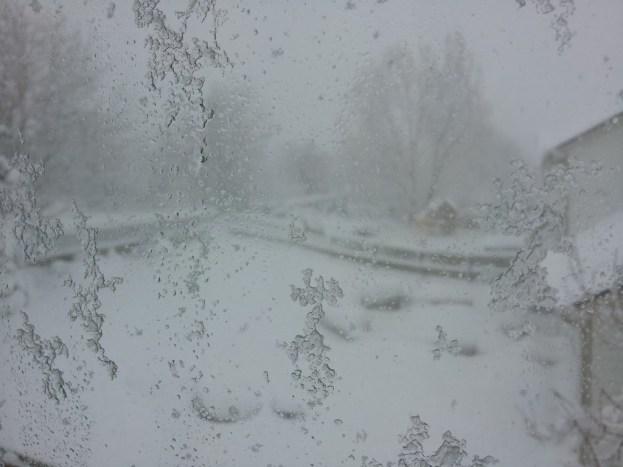 snow-03-23-16_2