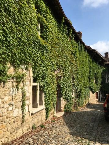 place-de-la-rondes-ivy-covered-houses