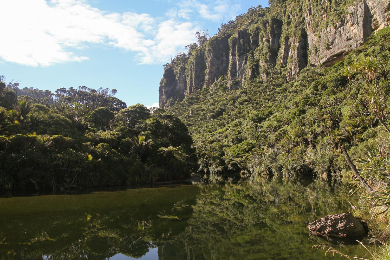 La Pororari River entourée de falaises