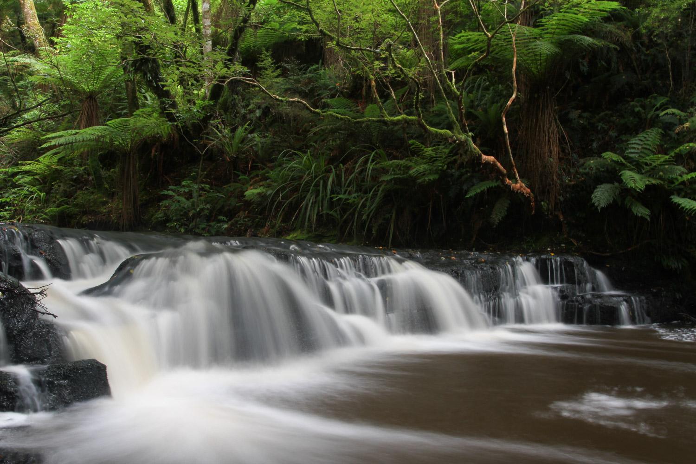 Une chute d'eau dans les Catlins