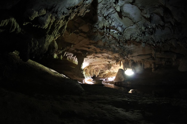 Entrée des Waipu caves