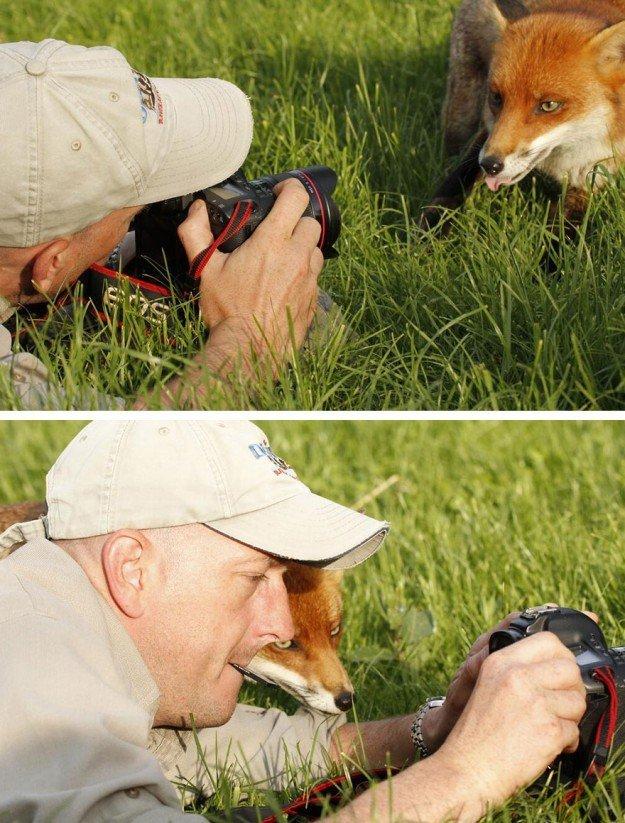nature-photographers-35__880-1-625x823
