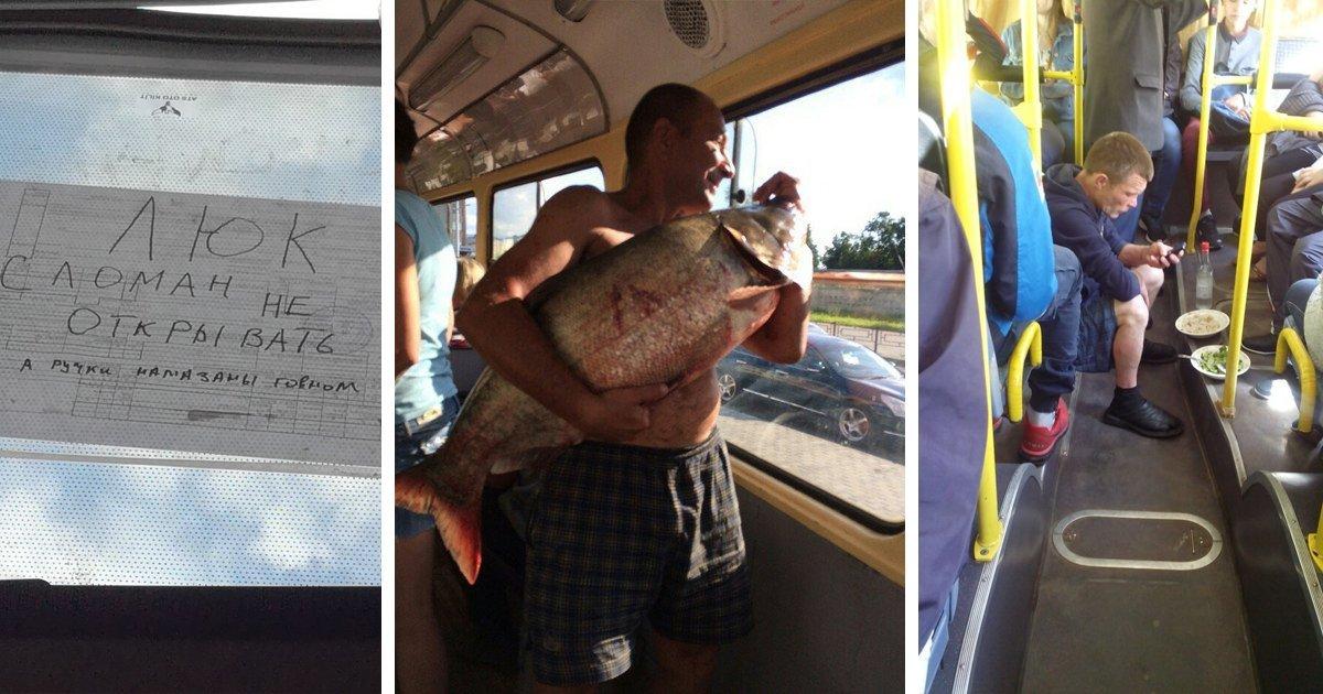 Удовольствие от поездки в общественном транспорте: 19 составляющих