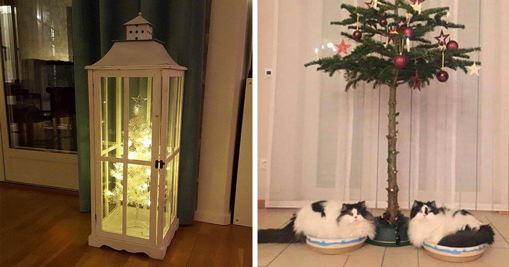 Гении, которые нашли способ защитить свои елки от кошек и собак