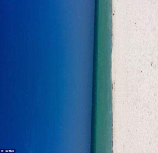 Пляж или дверь? В Сети появилась новая оптическая иллюзия, способная стать очередным яблоком раздора