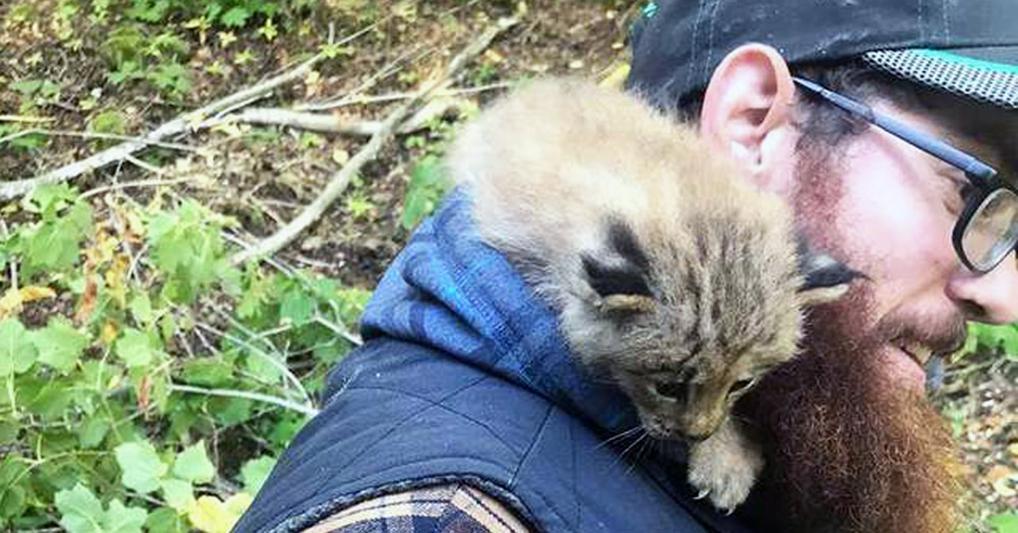 Парень решил спасти найденного на улице котенка, а котенок оказался с сюрпризом