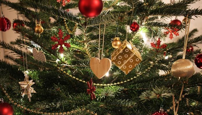 5c784939213f Ani tento rok dezinformačné servery pred vianočnými sviatkami nezaháľali a  ponúkli nám niekoľko dezinformácií s vianočnou tématikou.