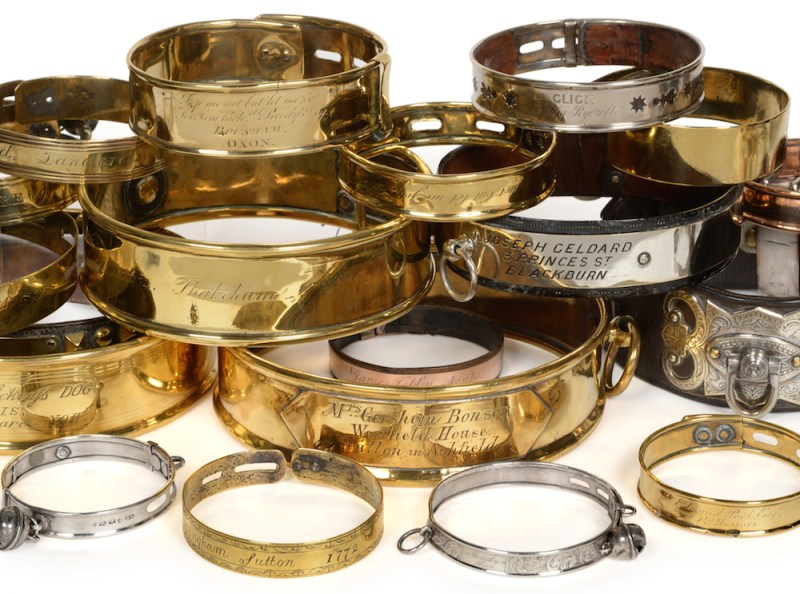 Collection of antique dog collars
