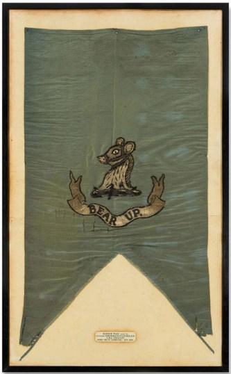 Polar sledge flag