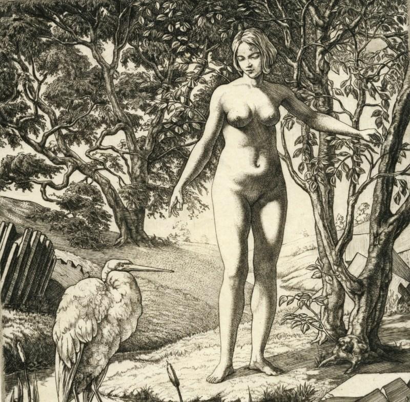 Work by the artist Dürer