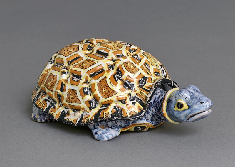 Tortoise from Brian Haughton Gallery