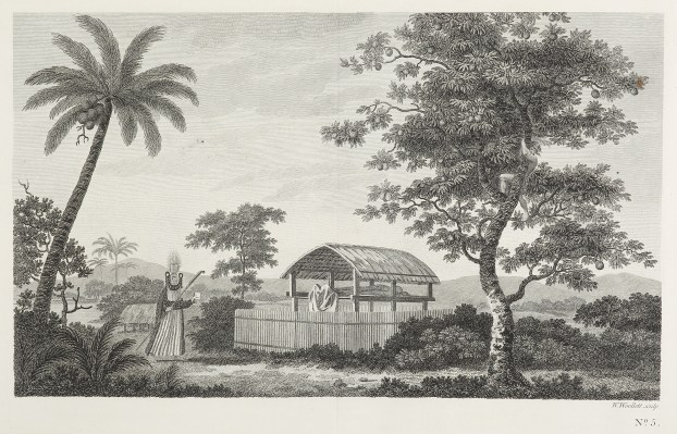 [A view in the island of Otaheite; with the house or shed called tupapow, under which the dead are deposited, and a representation of the person who performs the principal part in the funeral ceremony in his peculiar dress; with a man climbing the bread-f - Antique View from 1773