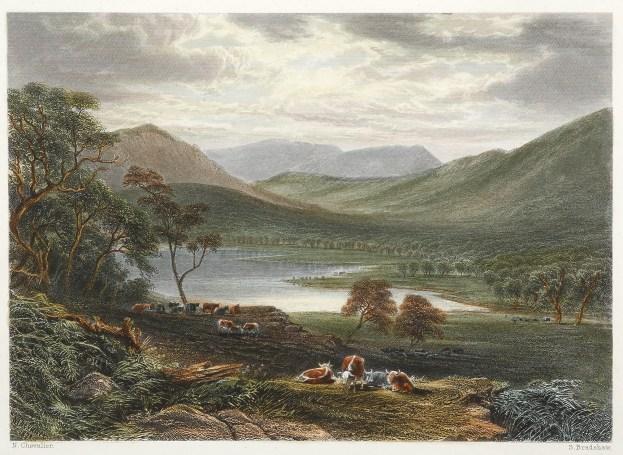 Victoria Valley & Mount Caroline. - Antique View from 1874